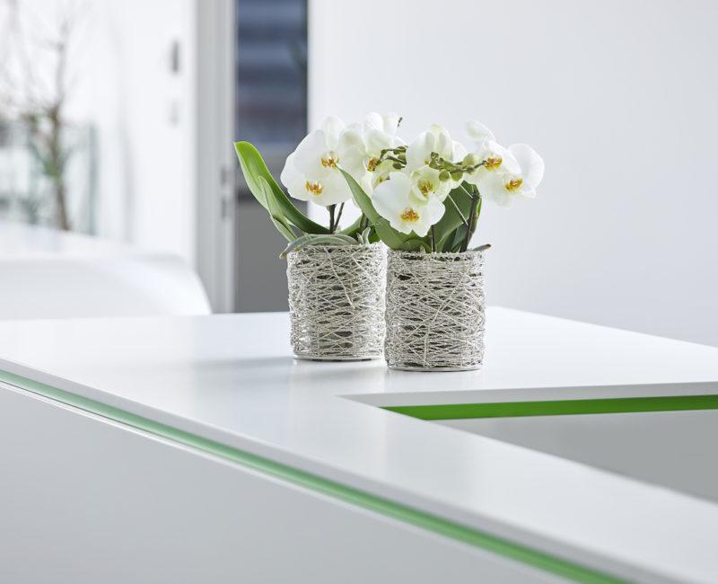 Blumen - Corona Rechtsanwalt Linz Österreich • Waitz Rechtsanwälte GmbH